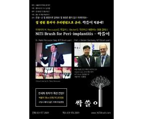 NiTi Brush - 싹쓸이 (포장단위 1박스 / 박스 당 8개)
